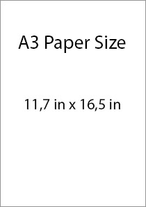 A3 size in inches